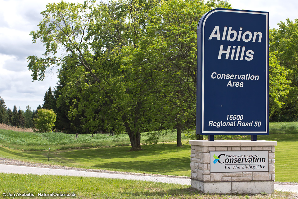 Albion Hills Conservation Area